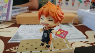 Hinata from Haikyuu!! has his library card, do you?